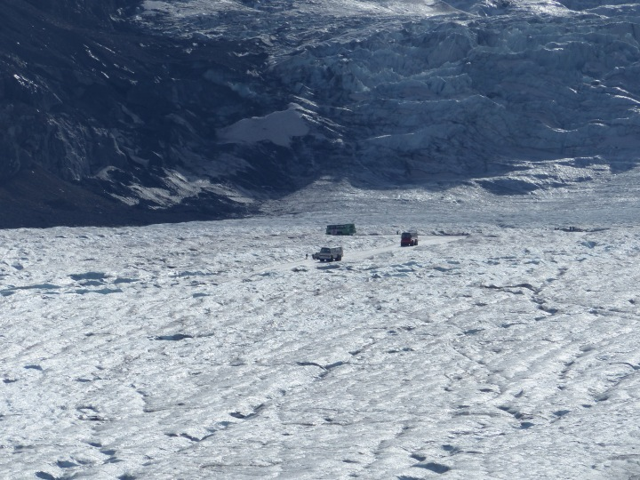 Bus tours on the glacier