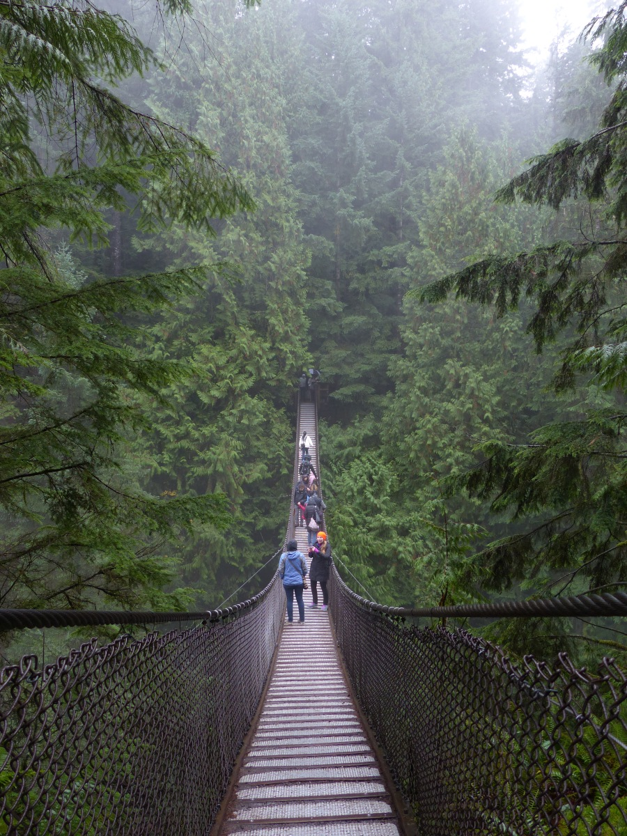 Braving the rain at Lynn Canyon Park and Suspension Bridge