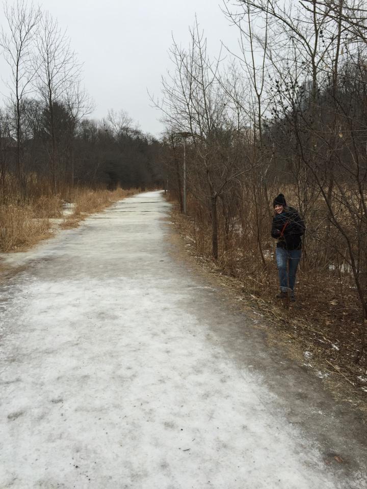 Frozen Toronto ravine