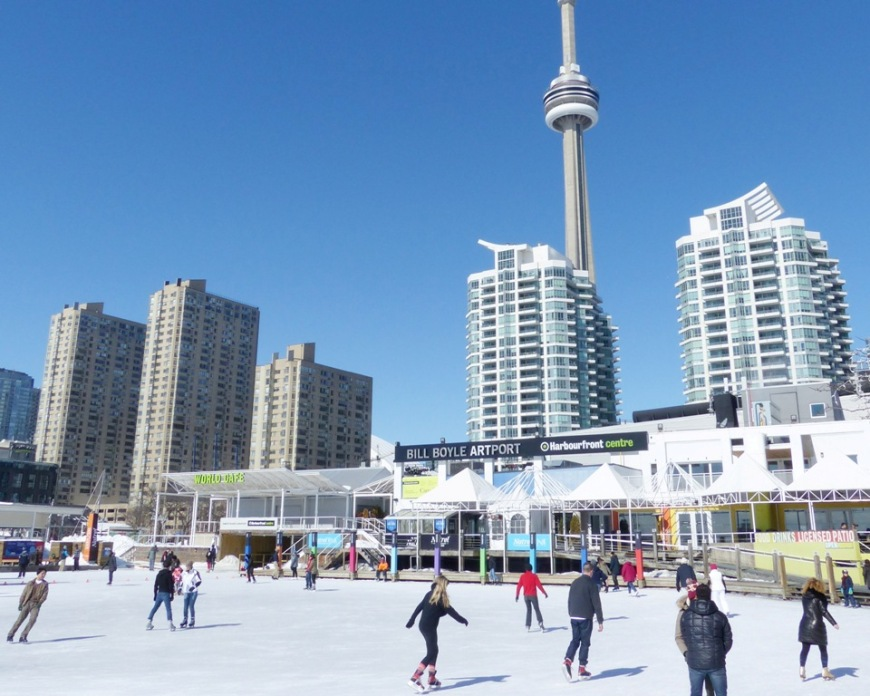 Harbourfront Toronto Ice Skating Brown Bear Travels