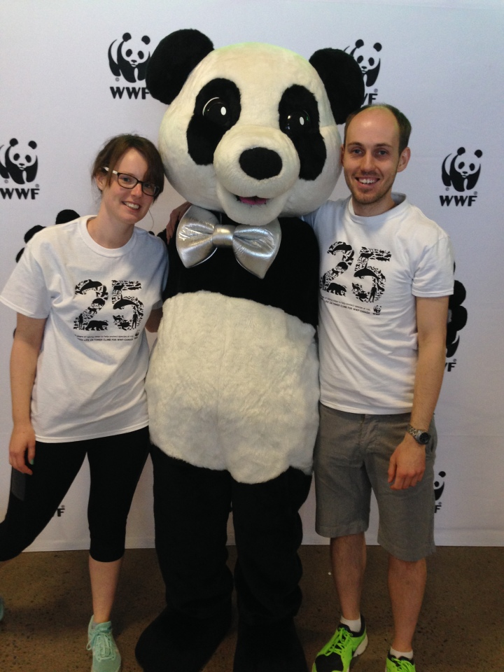 WWF CN Tower Climb