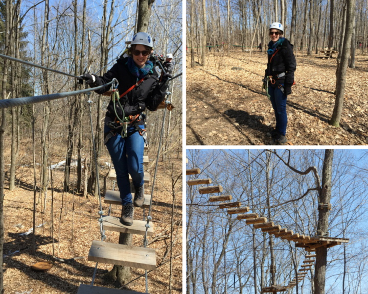 Zipline and treetop trekking Bruce Mill's