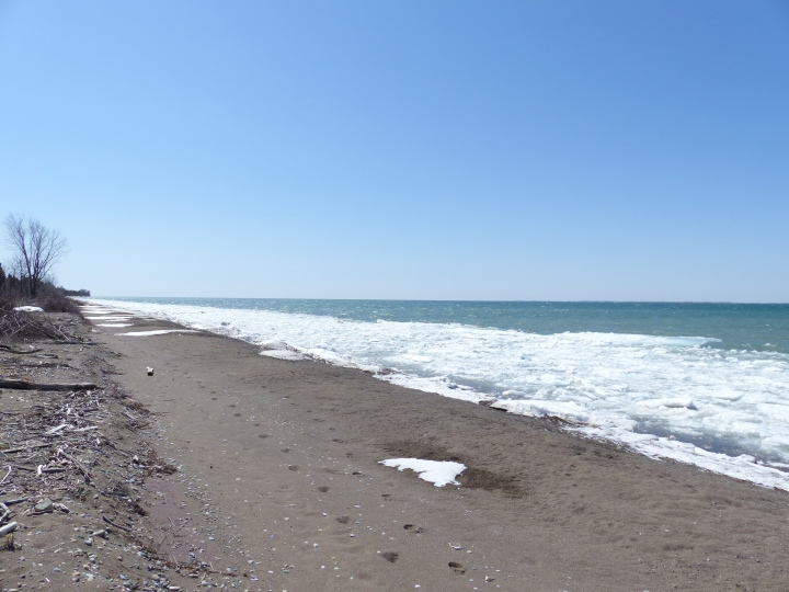 Point Pelee National Park West Beach