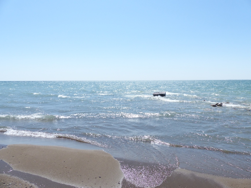Point Pelee National Park tip