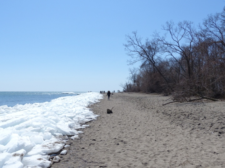 Point Pelee East Beach