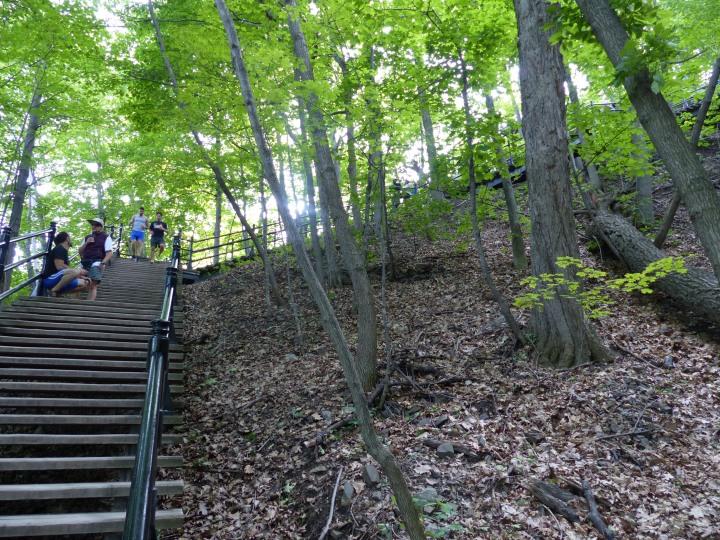 Steps on Mont Royal