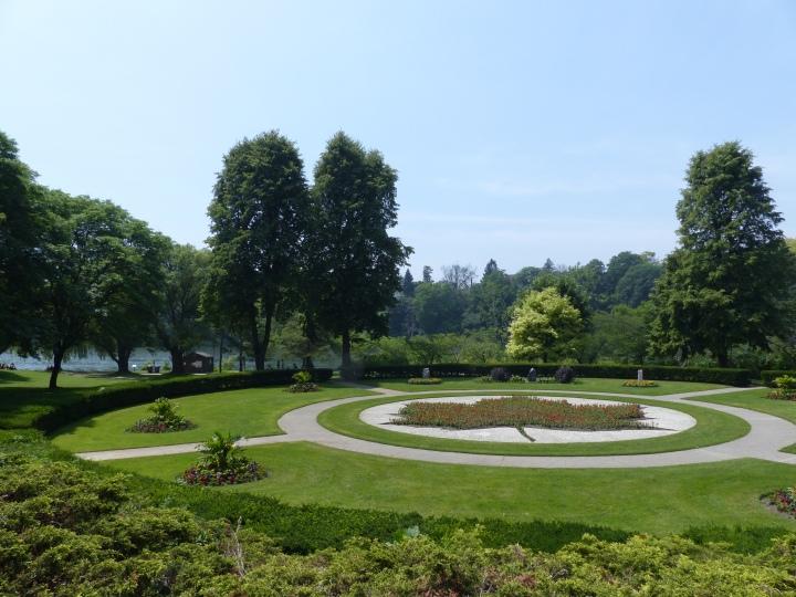 Maple leaf High Park
