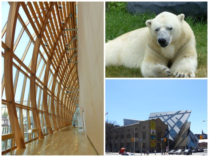 Toronto museum passes