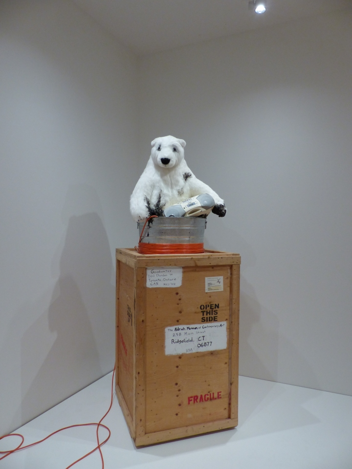 Polar Bear at the AGO