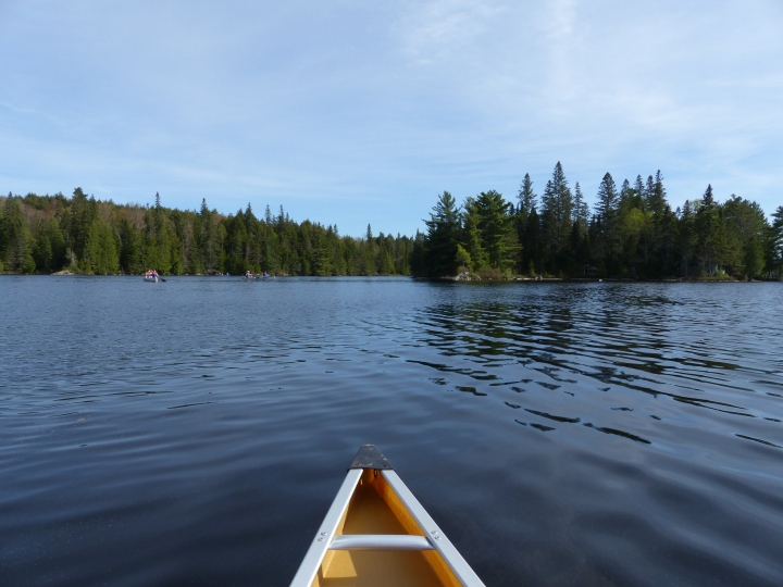 Canoeing in Algonquin Provincial Park