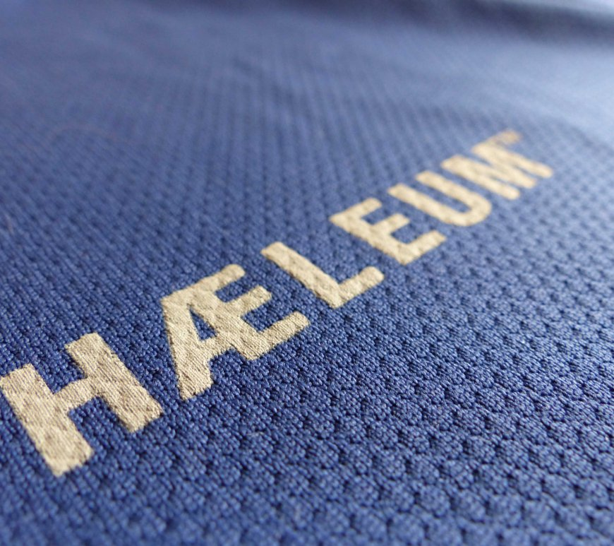 Haeleum Reccan insect repellent shirt