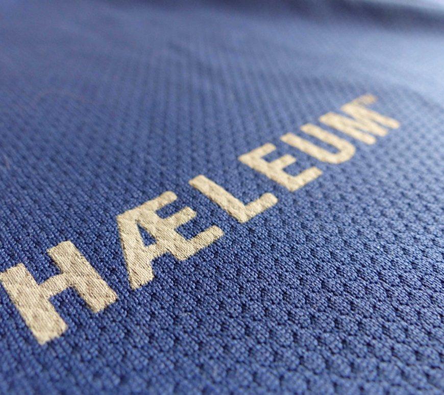Haeleum Reccan insect repellent shirt